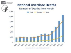 Drug caused deaths increases more each year!